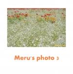 Meru's photo 3
