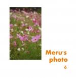 Meru's photo 6