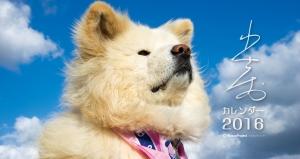 2016年版 わさお卓上カレンダー