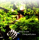 Place to live Living will place