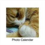 葉ちゃんカレンダー