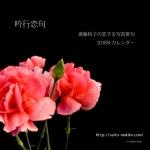 吟行恋句~恋する写真俳句~2018年カレンダー