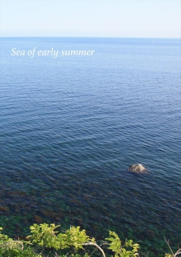 Sea of early summer