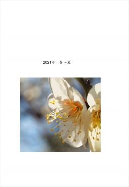 2021年花 春~夏